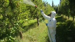 PesticideS pray Drift