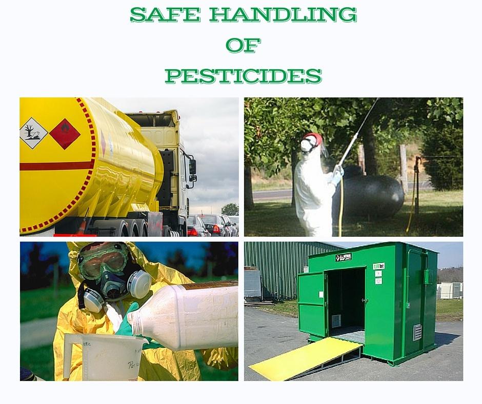SAFE_HANDLING_OF_PESTICIDES.jpg