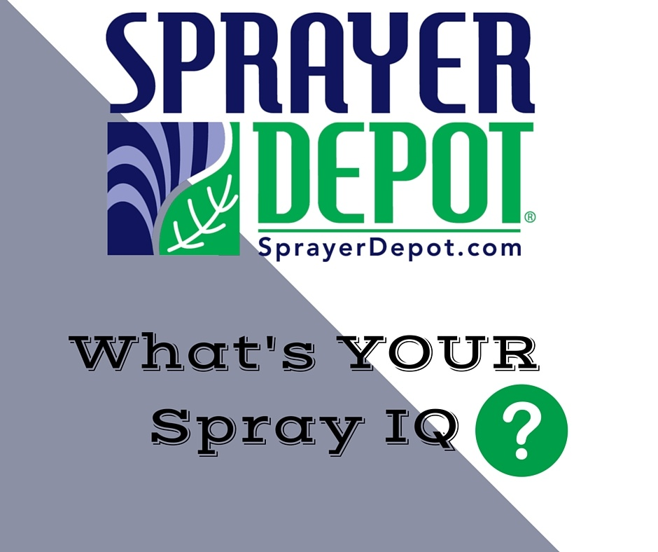 Spray_I.Q-2.jpg