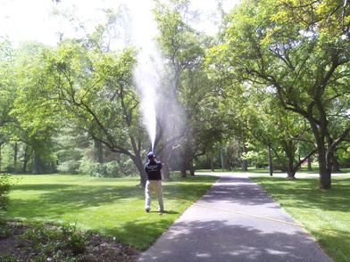 tree-spraying.jpg