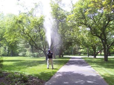tree-spraying.jpg
